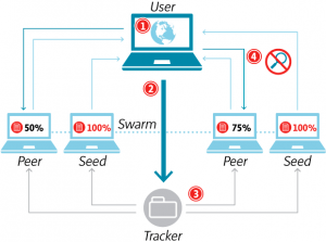 how does the torrent works