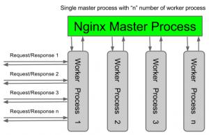 nginx-architecture