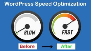 rocket-speed-up-your-wordpress-website